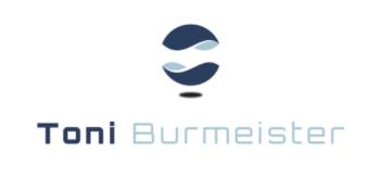 Logo Toni Burmeister Consulting